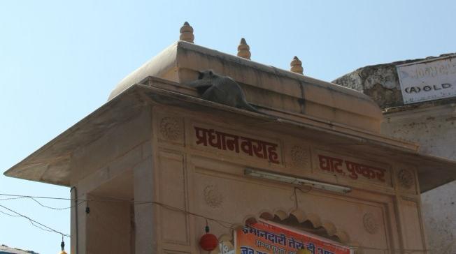 varaah ghat1
